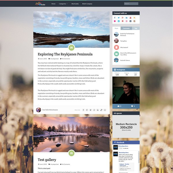 Keiler WP Theme